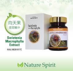 Nature Spirit Swietenia Macrophylla (Extract)