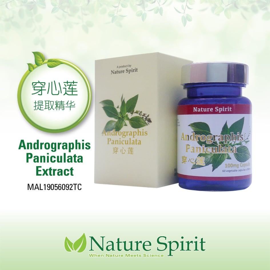 Nature Spirit Andrographis Paniculata (Extract)
